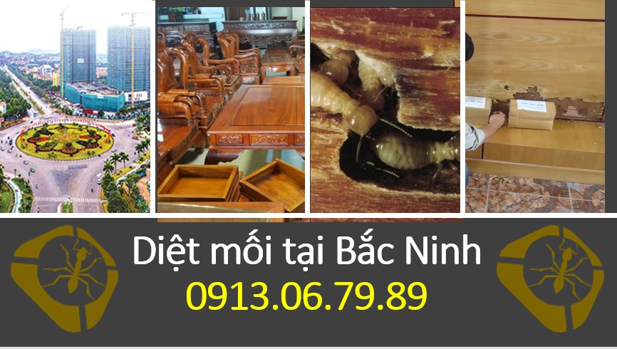 [Image: diet-moi-tai-bac-ninh.jpg]