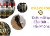 diet-moi-tai-cau-dat-hai-phong