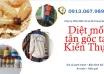 diet-moi-tai-kien-thuy