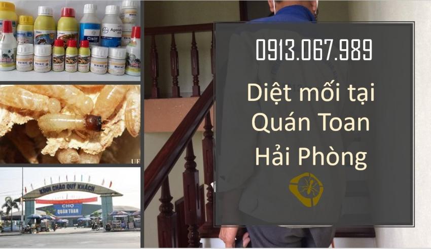 diet-moi-tai-quan-toan