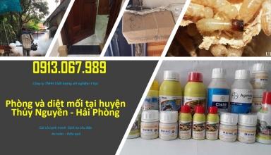 diet-moi-tai-thuy-nguyen