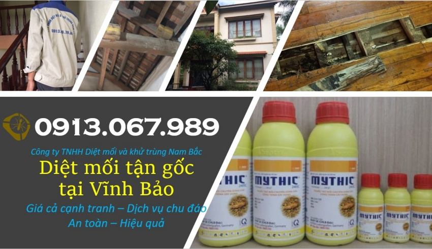 diet-moi-tai-vinh-bao