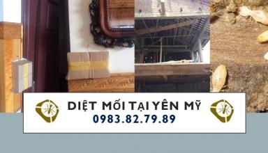 diet-moi-tai-yen-my-hung-yen