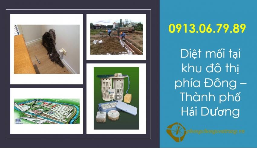diet-moi-tai-khu-do-thi-phia-dong