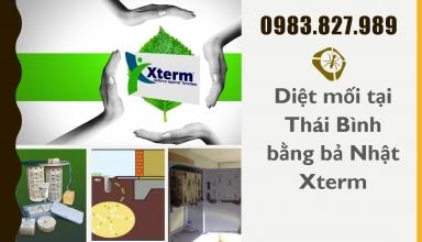 diet-moi-tai-thai-binh-xterm