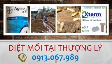 diet-moi-tai-thuong-ly-hai-phong