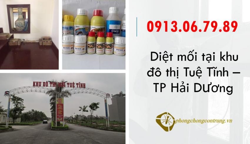 diet-moi-tai-tue-tinh-hai-duong