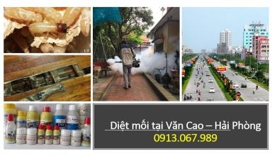 diet-moi-tai-van-cao-hai-phong