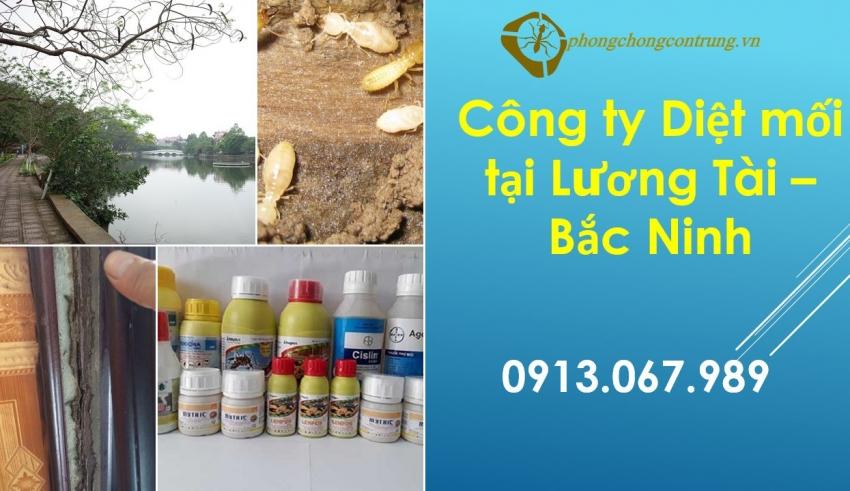 diet-moi-luong-tai