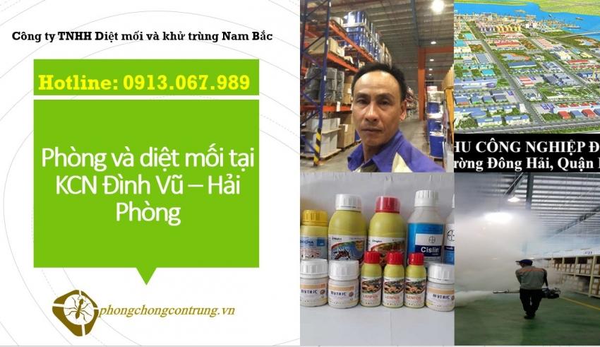 diet-moi-tai-dinh-vu