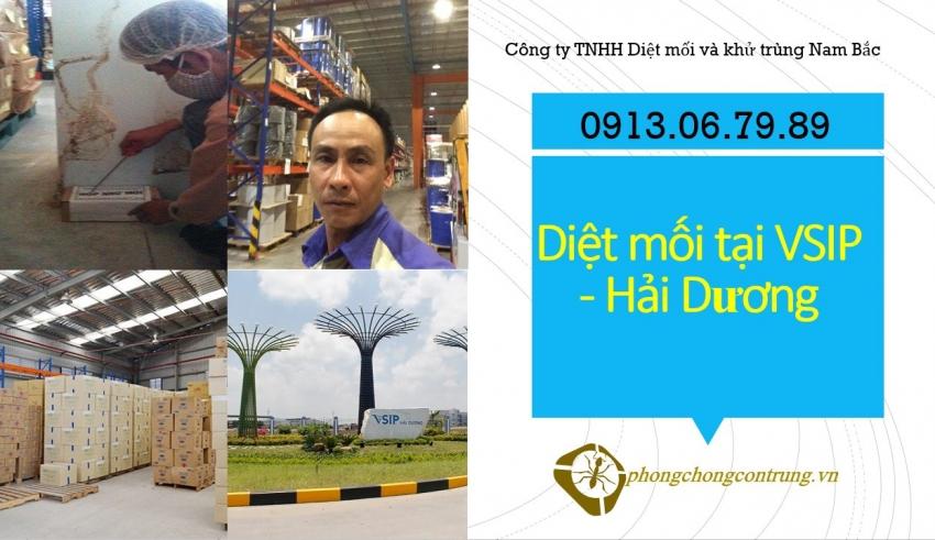 diet-moi-tai-vsip-hai-duong
