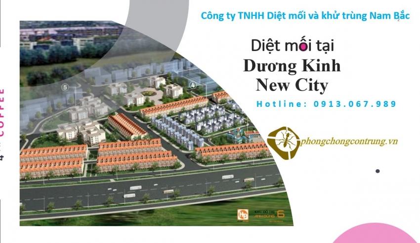 diet-moi-tai-duong-kinh-new-city