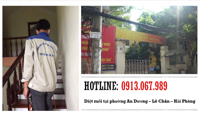 diet-moi-tai-phuong-an-duong