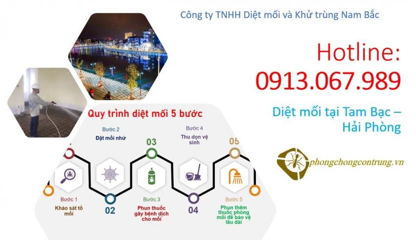 diet-moi-tai-tam-bac-hai-phong