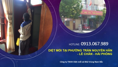 diet-moi-tran-nguyen-han