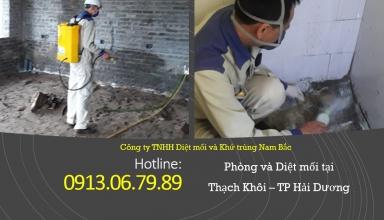 diet-moi-tai-phuong-thach-khoi