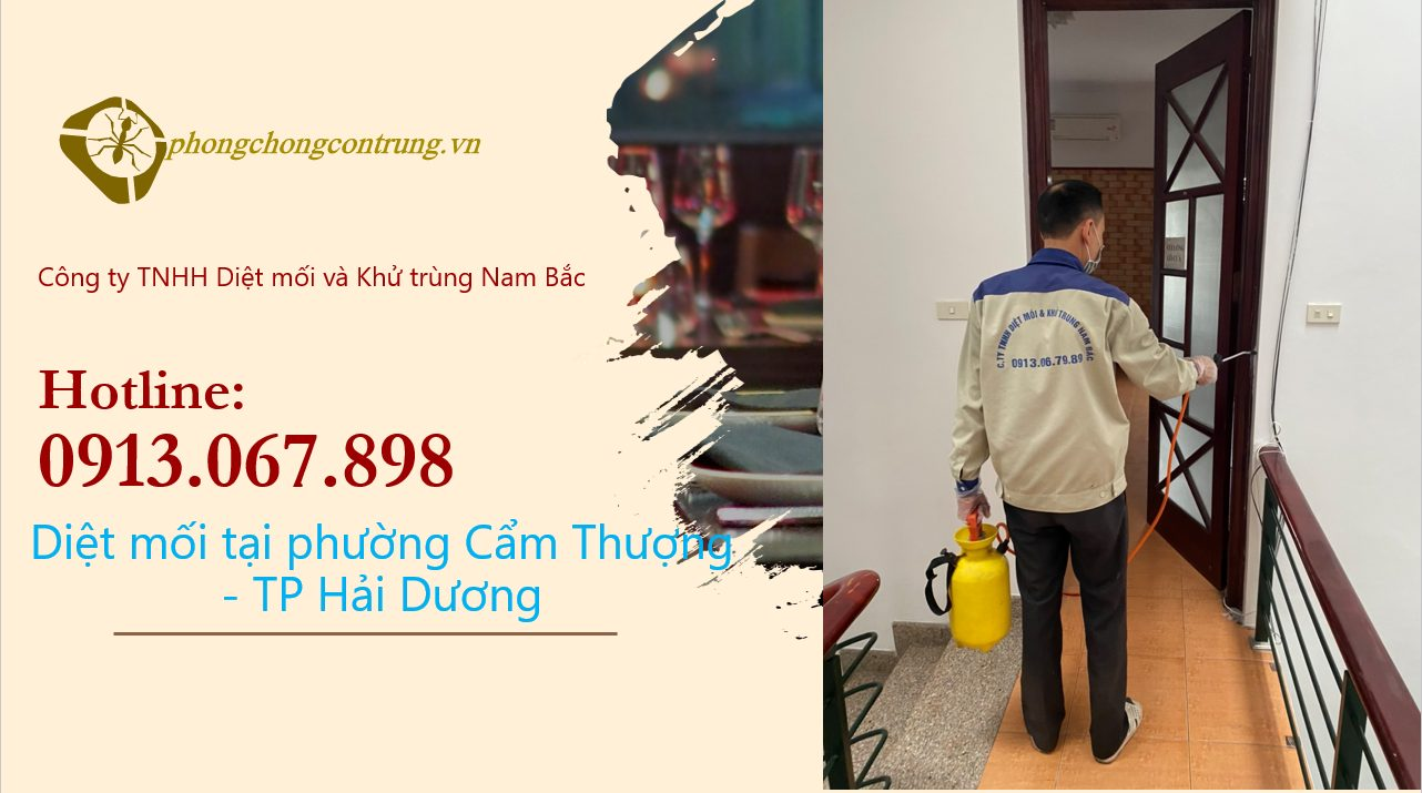 diet-moi-tai-cam-thuong