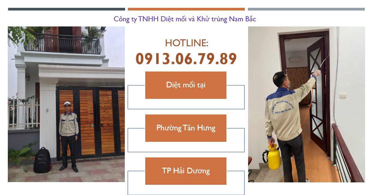 diet-moi-tai-phuong-tan-hung