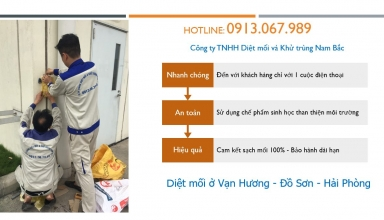 diet-moi-van-huong