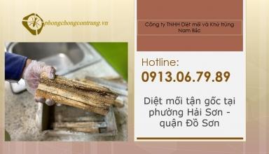 diet-moi-tai-hai-son