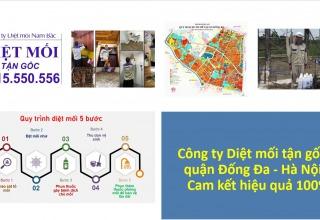 diet-moi-o-dong-da